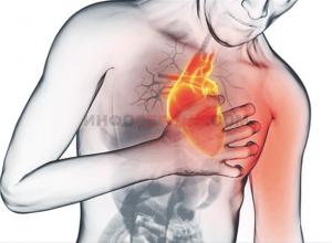 Что провоцирует развитие диффузного кардиосклероза?
