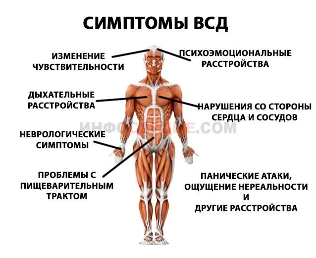 Симптоматика ВСД