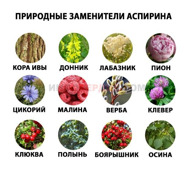 Лекарственные заменители аспирина