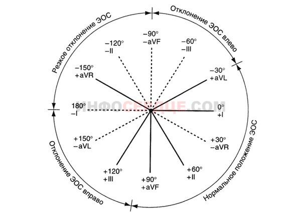 таблица Дьеда