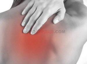 Возможные причины болей в области сердца отдающих в лопатку